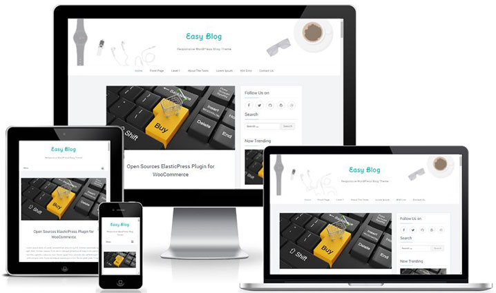 Easyblog - A Simple Responsive WordPress Blog Theme