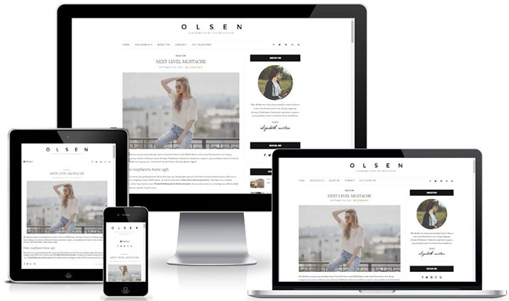 Olsen Lite - High Quality Free Responsive Blog theme