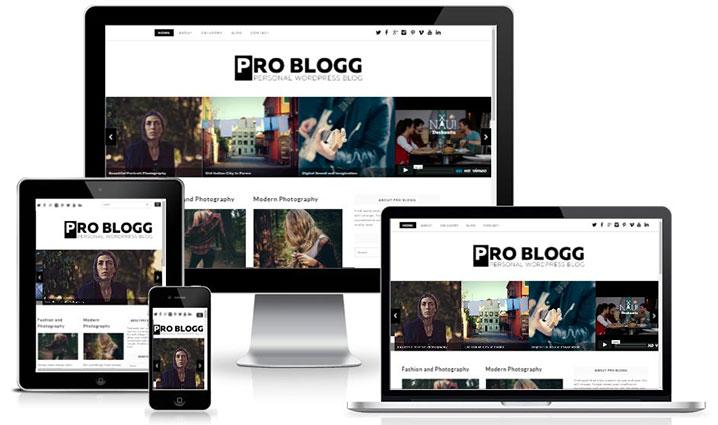 Pro-blog