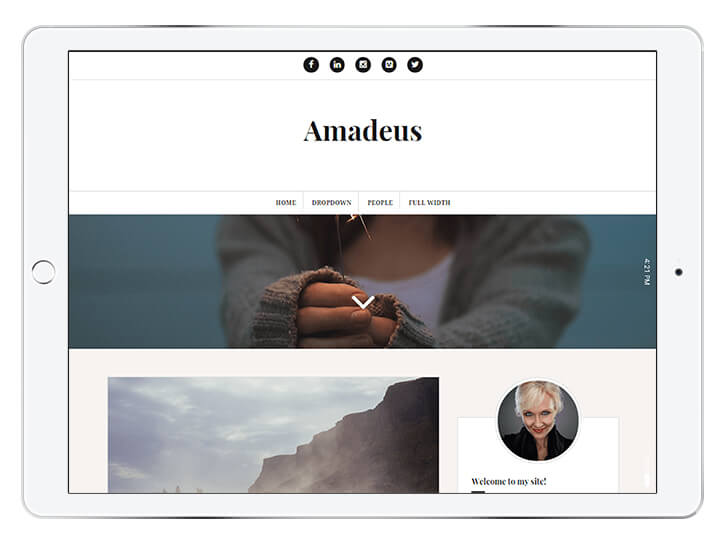 amadeus---wordpress-theme-for-a-beautiful-blog