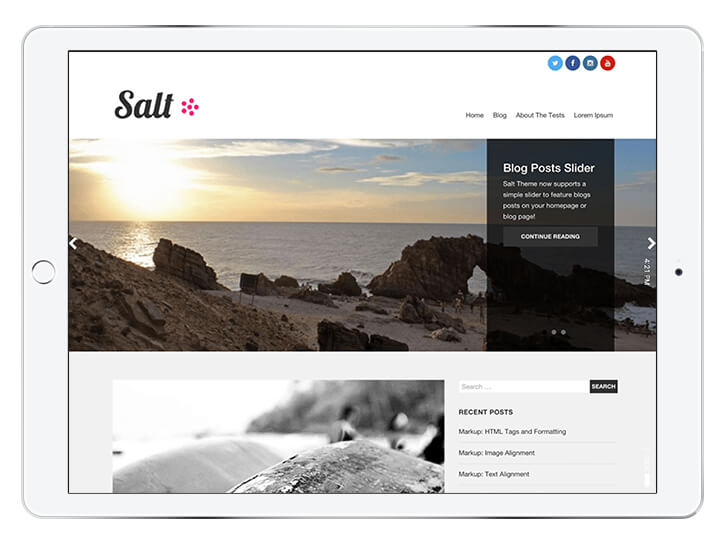 salt---wordpress-theme-for-a-beautiful-blog