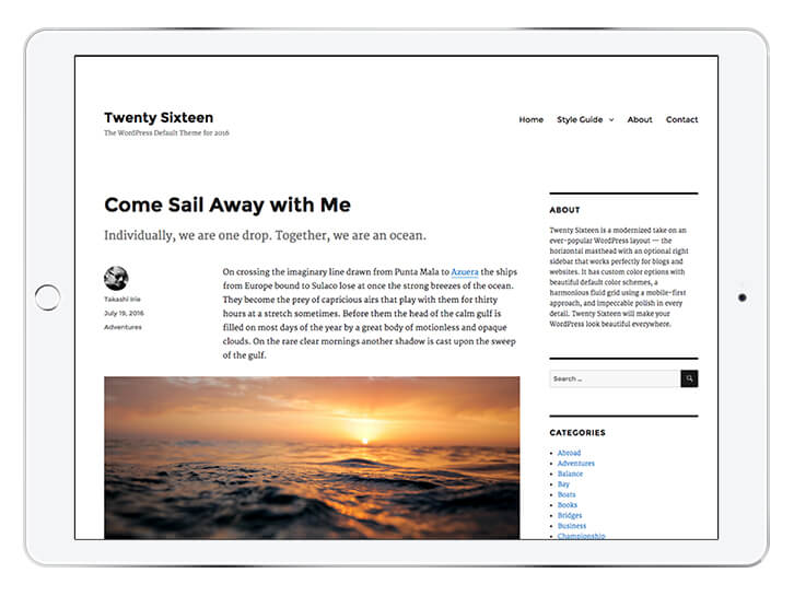 twenty-sixteen---wordpress-theme-for-a-beautiful-blog