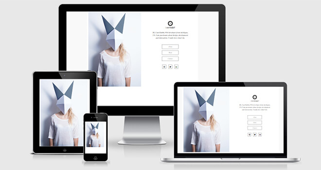 033. Rabbit free responsive bootstrap template