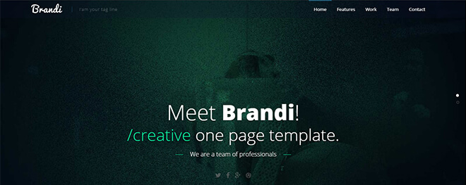 11.-Brandi business website design template