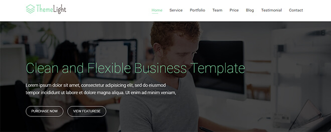14.-Themelight business website design template