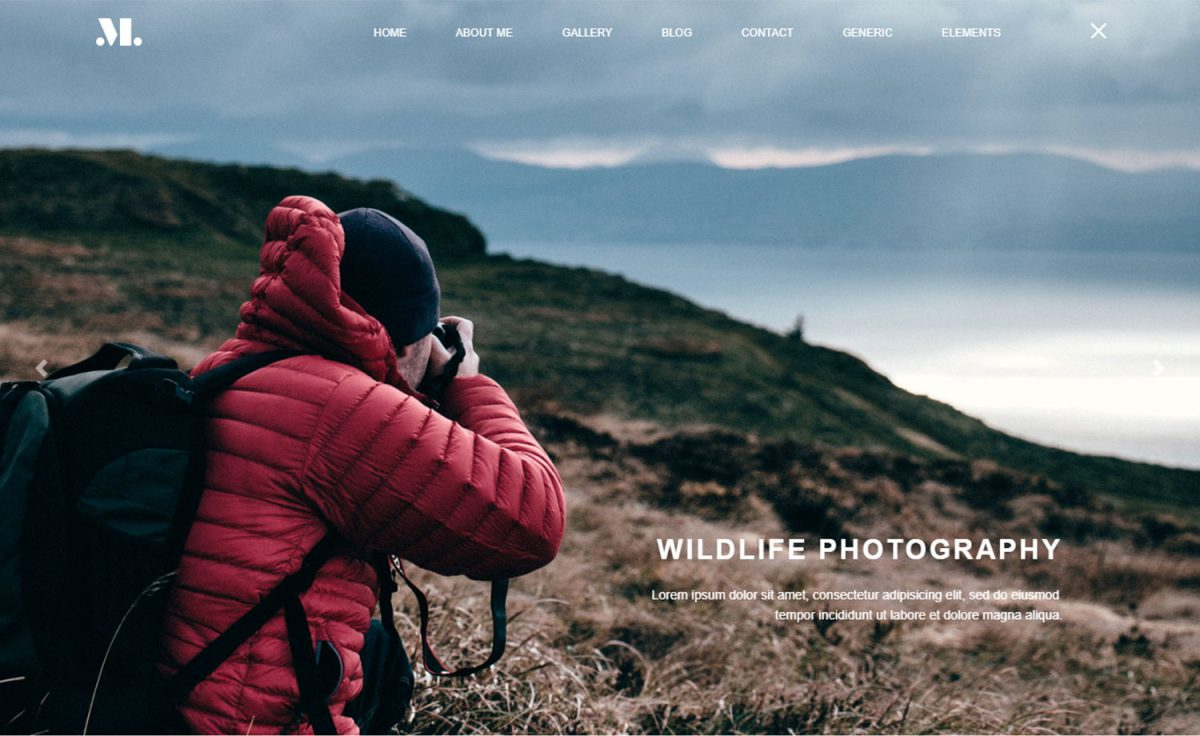Free HTML5 Template For Photographers