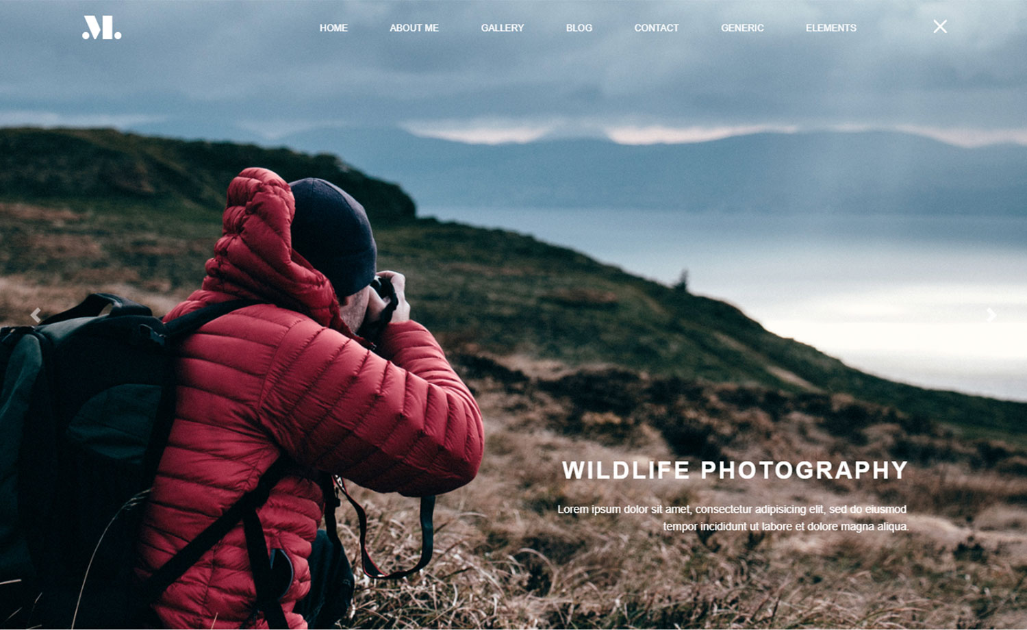 Free Photographer Portfolio Website Template