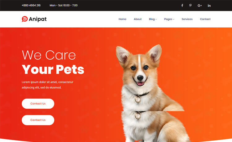 Free Bootstrap 4 HTML5 Pet Care Website Template