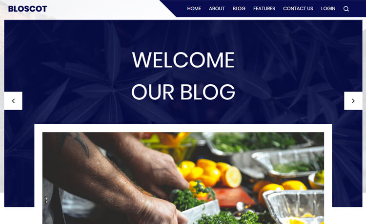 Free Responsive Bootstrap 4 HTML5 Blog Template